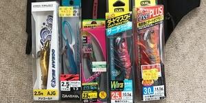 【エギング】初心者がアオリイカを釣るまで ①道具をそろえる