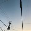 ジョギング24.85km・早朝ロング走&8月のまとめ