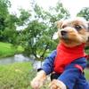 長野のアマゾン!?上田市【美穂ヶ池市民緑地公園】愛犬のお散歩に♡