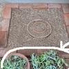 多肉植物の花壇(サキュレントガーデン)のリニューアル