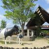 むかちんと九州(熊本県)へ旅行✈️✨