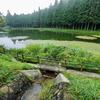 八雲池(山梨県富士川)