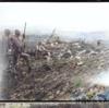 1945年6月1日 『残存兵の戦場』