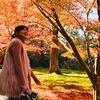 <帰れまサンデー秋の京都:11/26放送>アンタッチャブル山崎&菊川怜と草野仁&ギャル曽根が!