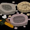 化石の秘密