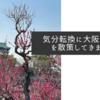 気分転換に大阪城公園を散策してきました