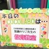 みかん寿司・甘酒ヨーグルトみかんペースト添え ~のり子先生の食育教室~