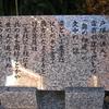 街道ウォークのお宝  戸塚→藤沢①