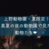上野動物園「真夏の夜の動物園」でパシャパシャ撮ってきた!