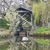 御花庭園のお池(福岡県柳川)