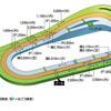 【馬場情報】京都競馬場