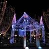 閑歩:静岡 『青葉シンボルロードイルミネーション』がとっても綺麗♪