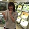 学生や女性の一人暮らしにオススメの爬虫類5種!
