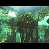 ラケティカ大森林①