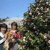 お花見 2012 デザート編