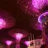 4泊5日  シンガポール女子旅④