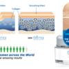 Elemor Cream: Facial Anti Aging BEWARE Read Side Effects & Buy ...
