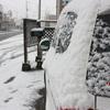 外は雪景色で・・・・。    川瀬ブログです。