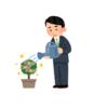 【明日から再開】4/30,5/1チャート保存