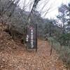 山梨百名山 〜黒金山(2232m)〜