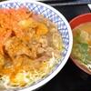 11/11 1772日目 サラダ牛丼(自作)