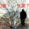 【不思議体験】弟が虹の橋を渡る前に母に会いに来ていた?認知症か霊的体験か?