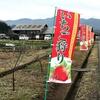 イチゴ狩りへ ~関市「ふるさと農園美の関」~