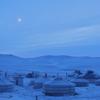 11月 モンゴル ゲル泊 遊牧民・タヒ・雪原 撮影ツアー1