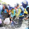 夏休み学童「川の探検」 Abenteuer im Tama Fluss