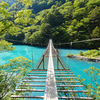 静岡県の観光地を紹介