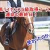 乗馬5級ライセンス取得コース 運命の最終日!