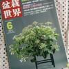 【感想】「盆栽世界 2011年6月号」 新企画出版局
