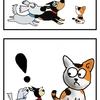 【犬漫画】ノラネコのTNR活動に一票です!
