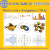Get in Touch with our Experts for Mathematica Assignment Help