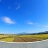 山形県国道林道458号