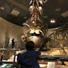恐竜って子どもがはじめて歴史をかんじる瞬間なのでは