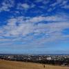 「大乗寺丘陵公園」からの市内展望
