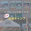 ソフトバンクホークス<春季>宮崎キャンプ情報!