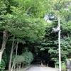 鎌倉に夏が戻って秋の七草