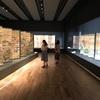 【展覧会】 狩野派学習帳@西高島平・板橋区立美術館のレポート(2020/8/2訪問)