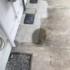 築古アパートの水道管から水が。。