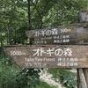 046 「 オトギの森 」