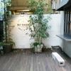飯田橋散歩!!美味しいバックリブを食べたいなら今すぐ飯田橋の「no name」さんに行くべし!!