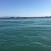 浜名湖海釣り公園 逃した魚は大きかった…