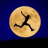お月さまの影響とその他もろもろ思うこと。