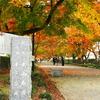 那須塩原市大山公園のイロハモミジの紅葉を撮りに行く。