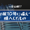 【一挙公開!】台風10号に備えてあらゆるものを買い揃えてみた!