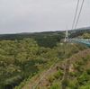 熱海からもう少し足を伸ばそう!大吊橋三島スカイウォークと清流が流れる柿田川公園を紹介!