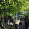 頂の祭の遊山 神の森