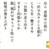 アドビシステムがオリジナルフォント「貂明朝」をリリース